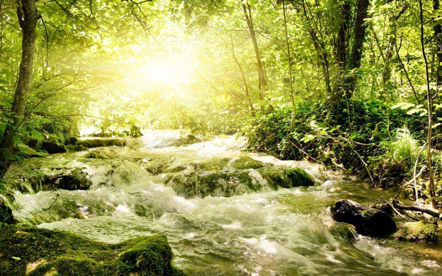 El Espíritu Santo se manifiesta de muchas formas en nuestras vidas.