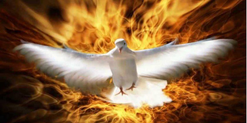 Recibimos el Espíritu Santo por gracia no por méritos.